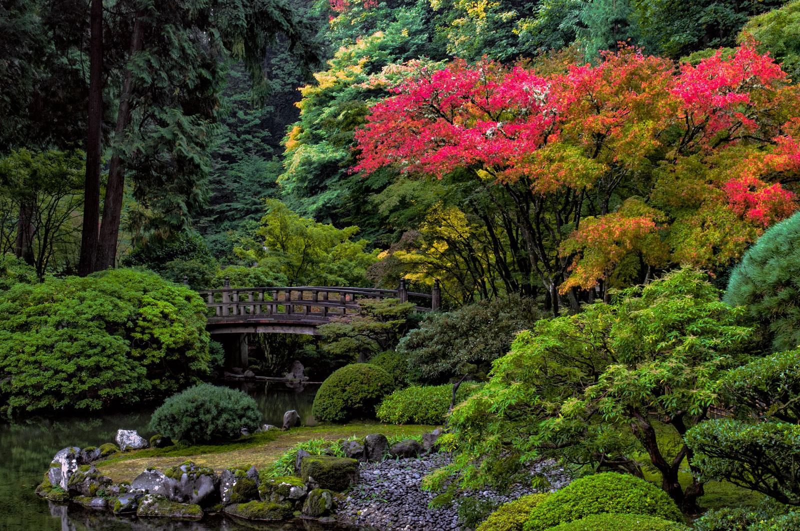 Staff leadership portland japanese garden for Portland japanese garden admission