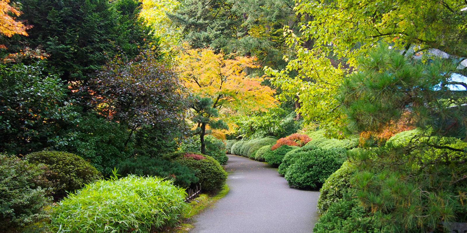Strolling Pond Garden Fall