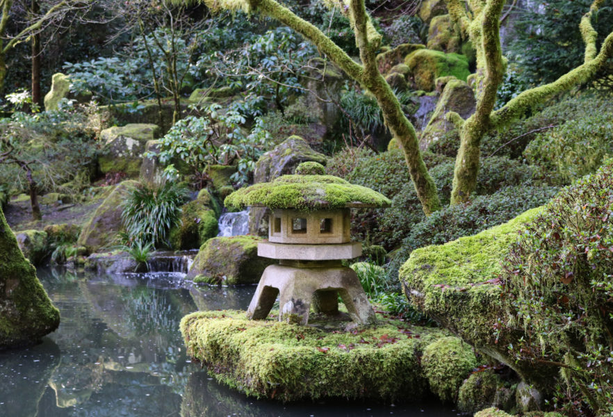 Early spring in the garden portland japanese garden - Portland japanese garden admission ...