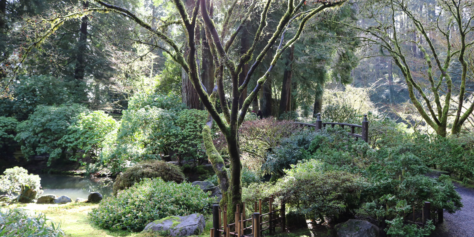 Early spring in the garden portland japanese garden for Portland japanese garden admission