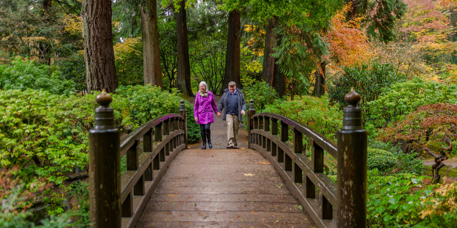 Join or renew portland japanese garden for Portland japanese garden admission