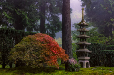 About Portland Japanese Garden