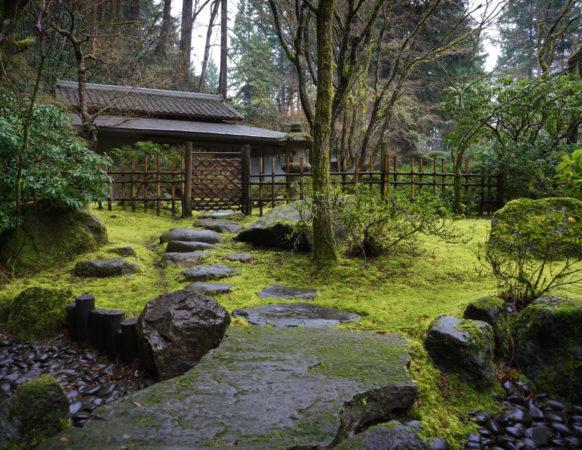Tea Garden – Portland Japanese Garden