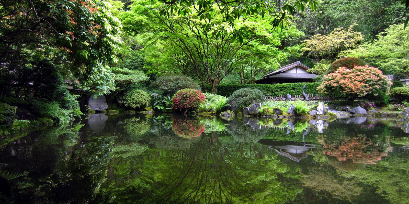 Nature Photography Day Portland Japanese Garden
