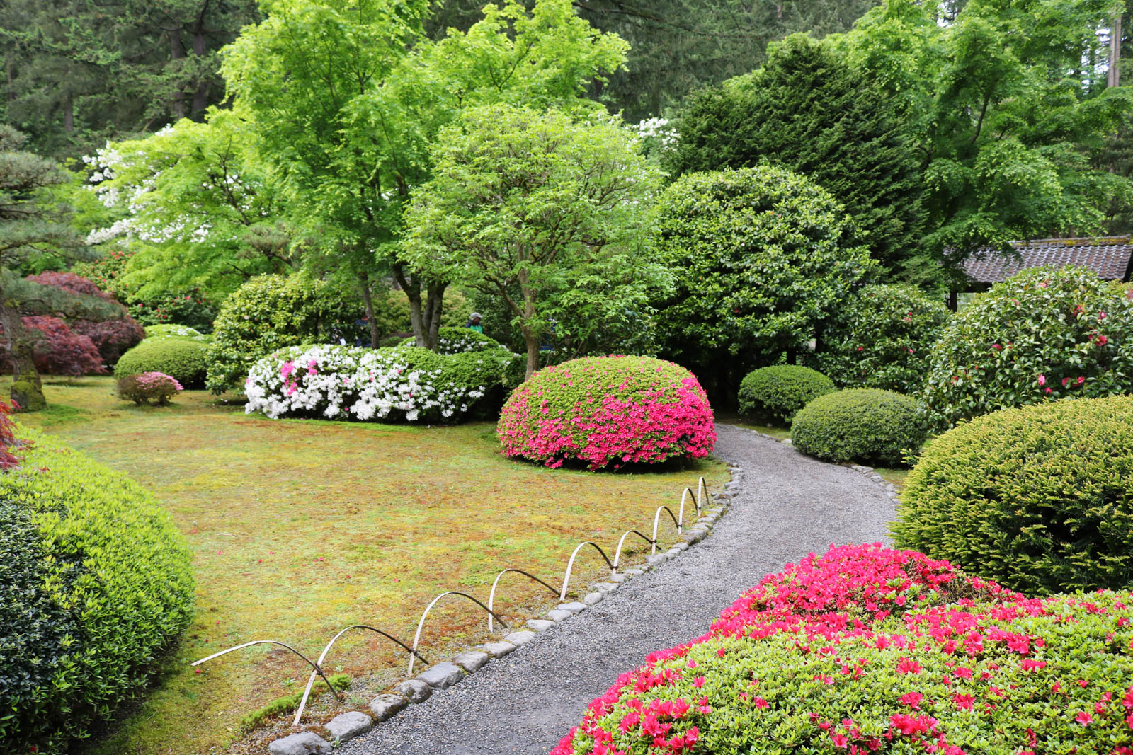 Shades Of Springtime Portland Japanese Garden