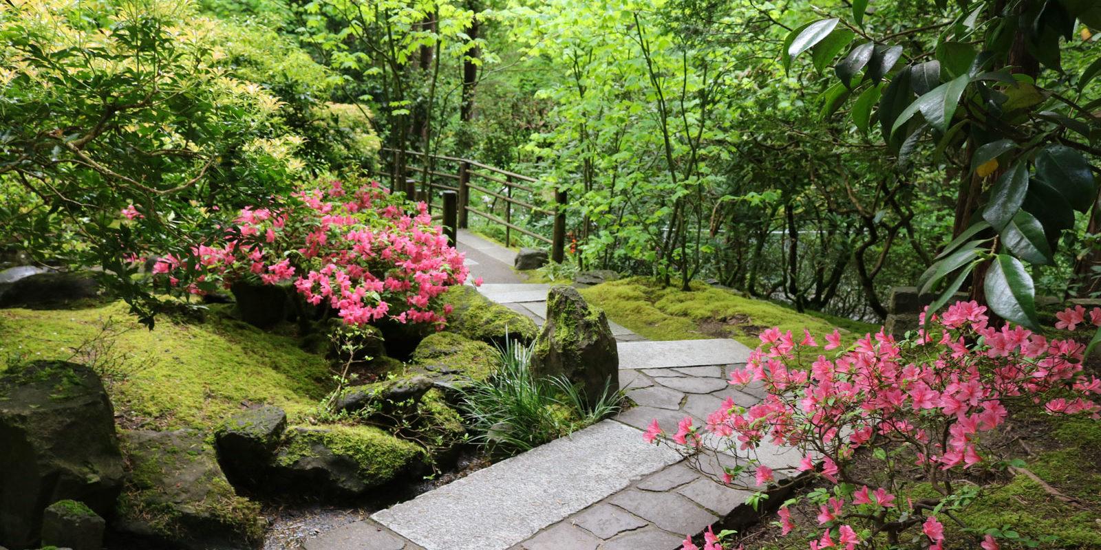 A walk through the natural garden portland japanese garden - When you walk through the garden ...