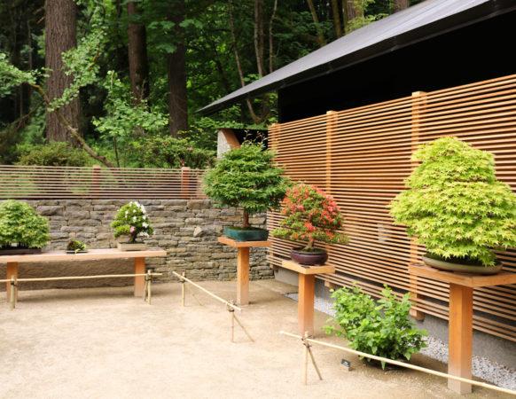 Tsubo Niwa Portland Japanese Garden