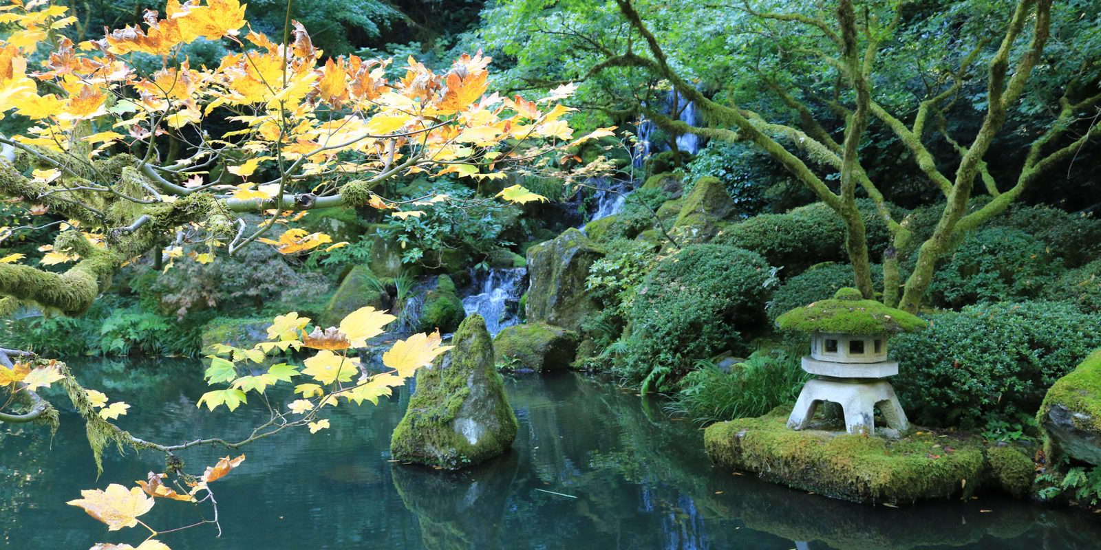 Fall color update october 16th portland japanese garden for Japanese garden colors