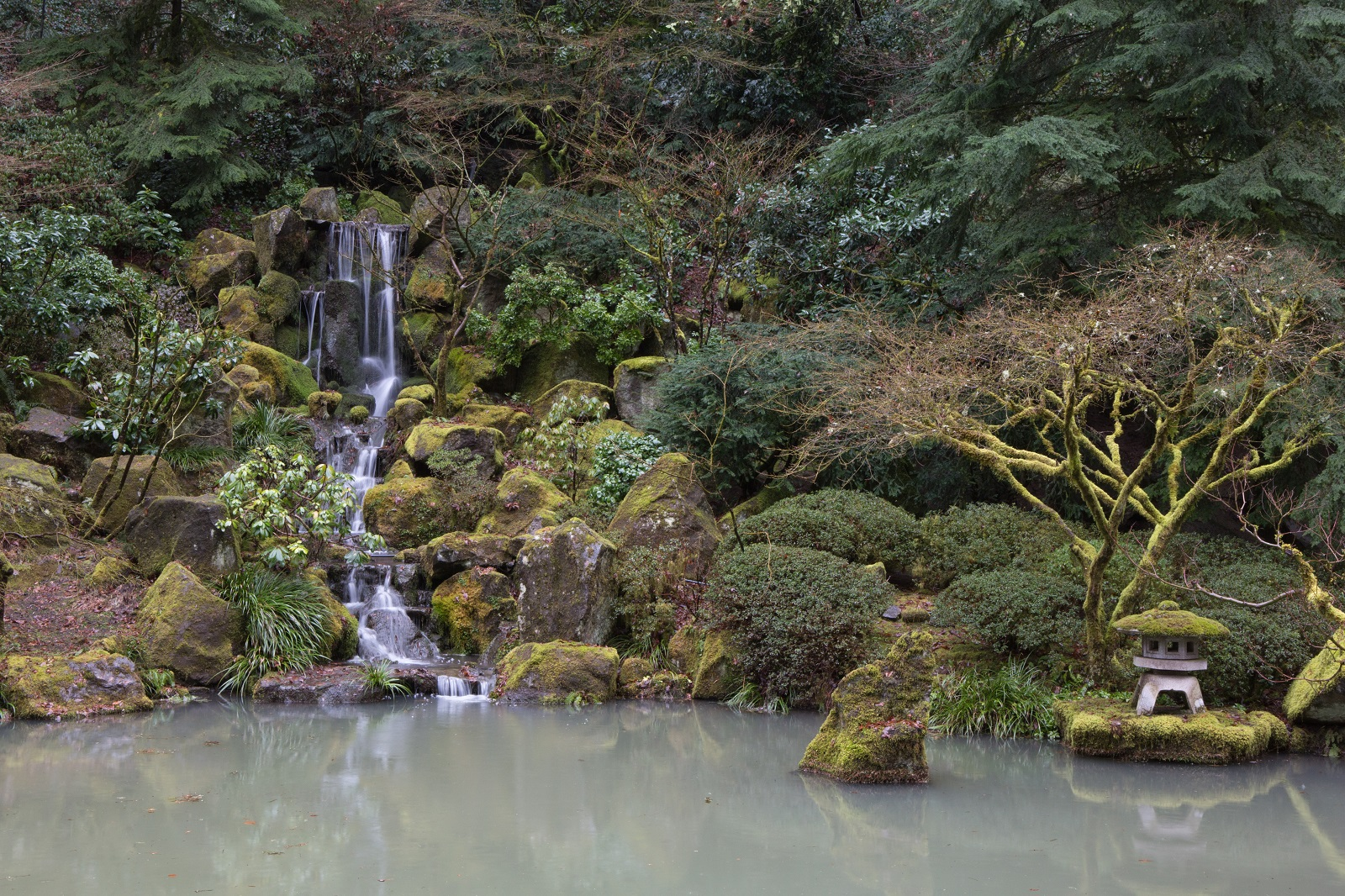Christmas day garden closed portland japanese garden for Closed loop gardening