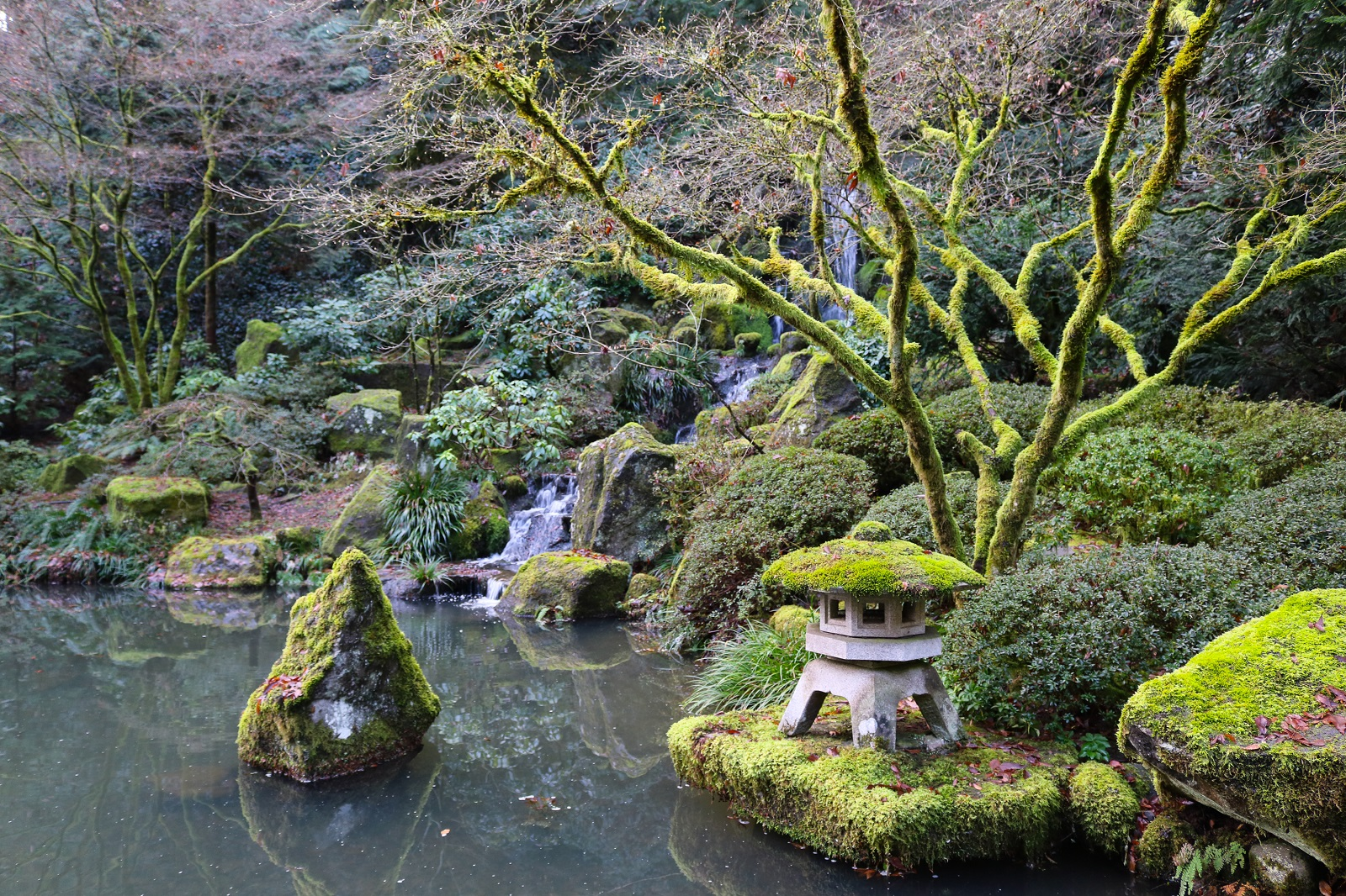 Portland japanese garden offers free admission to - Portland japanese garden admission ...