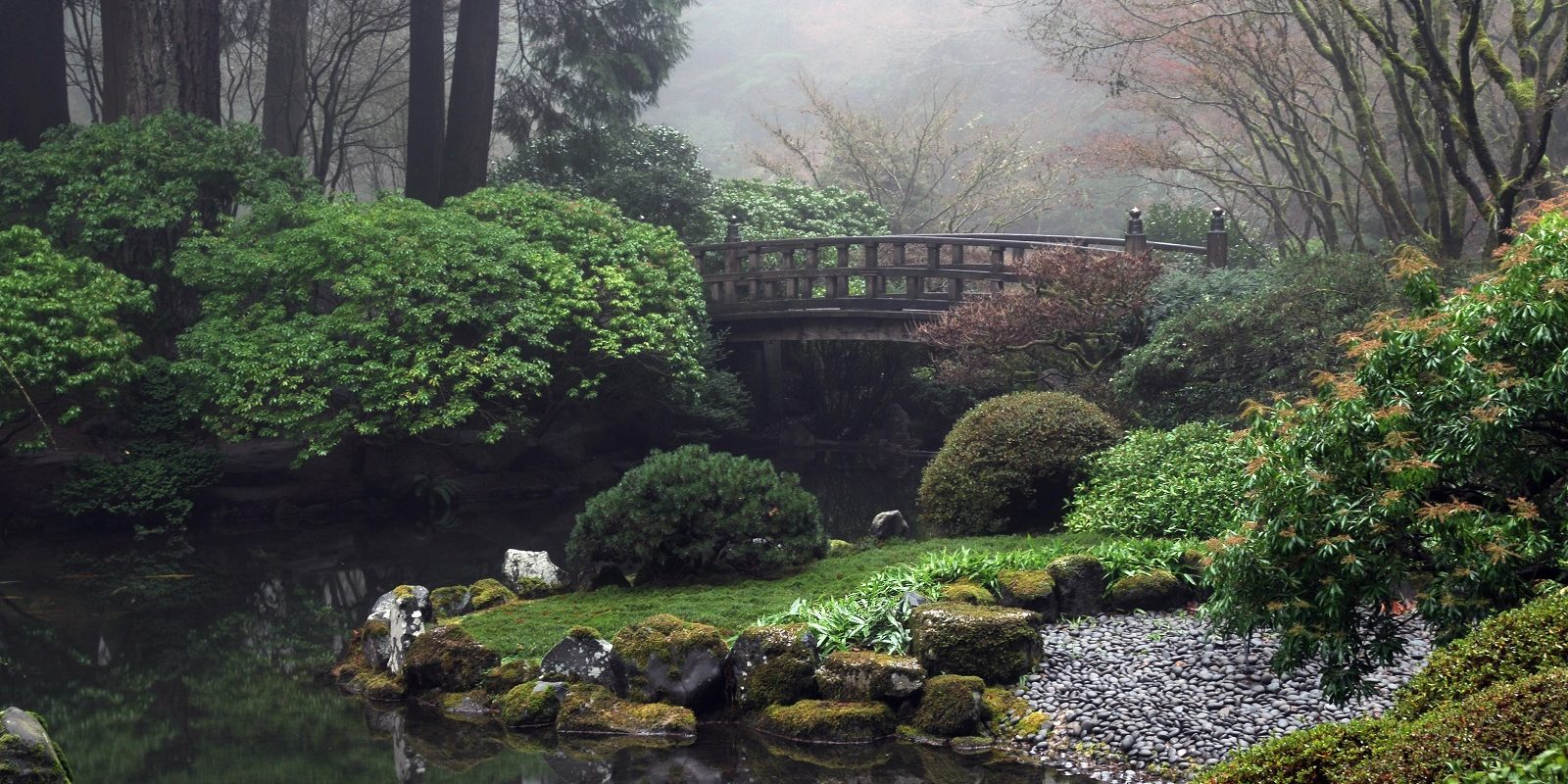 winter in the garden - Japanese Garden