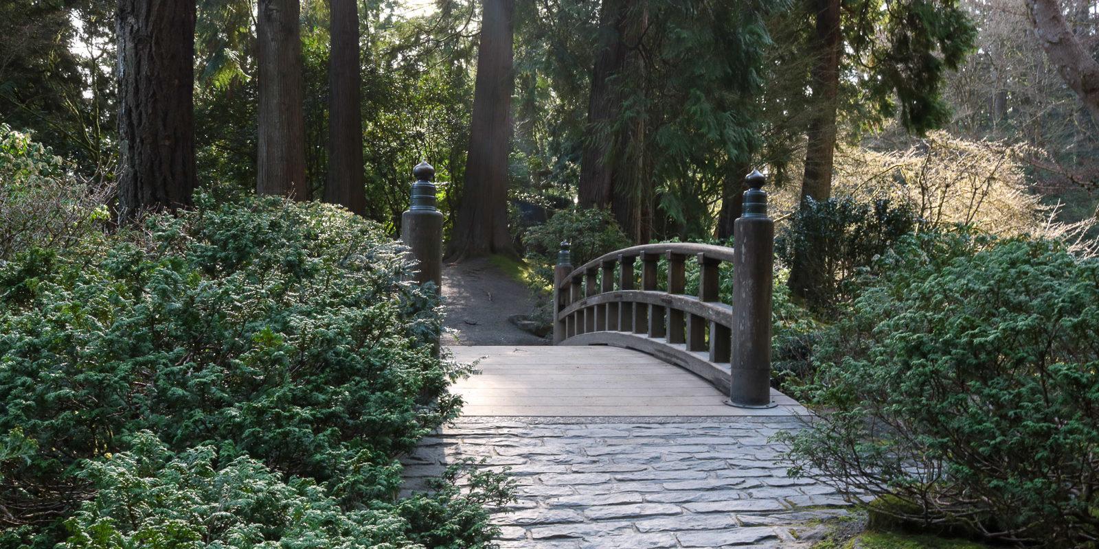 Julia Taylor_LR_Portland Japanese Garden_March 2018_IMG_3861