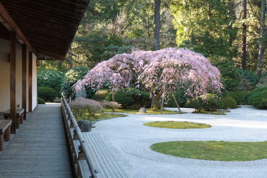 First day of spring portland japanese garden - Portland japanese garden admission ...