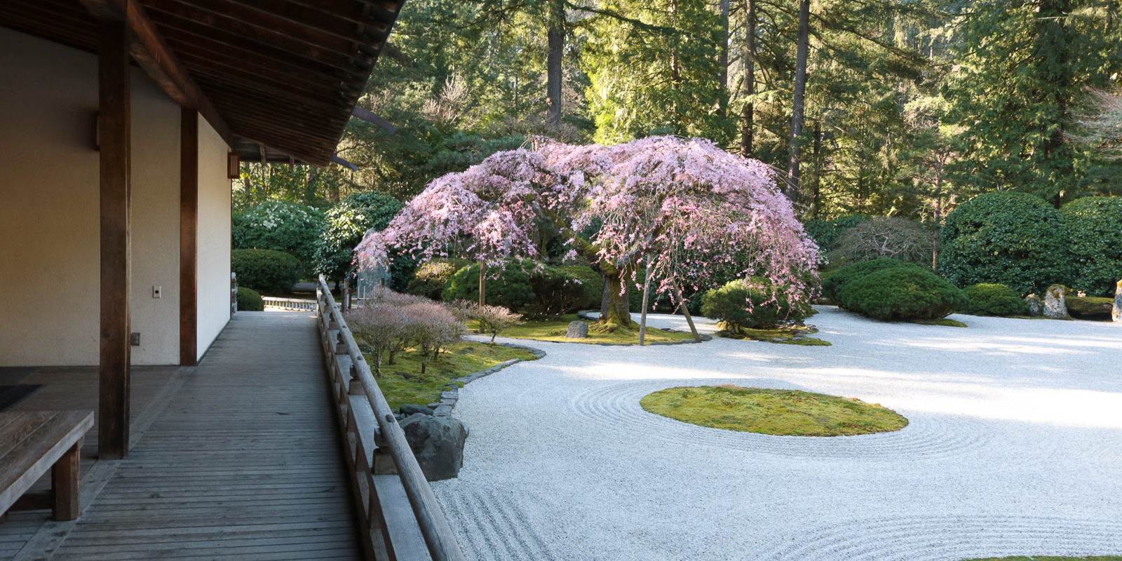 LR_Julia Taylor_Portland Japanese Garden_March 20, 2018_IMG_4303