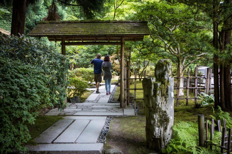 Summer of Serenity: 5 Ways to Enjoy the Garden this Summer ...