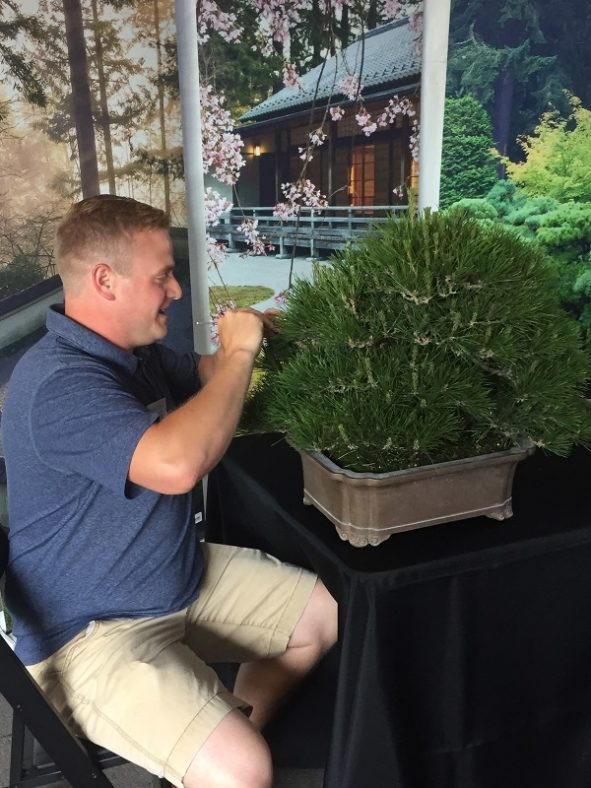 Andrew Robson demonstrating the art of bonsai