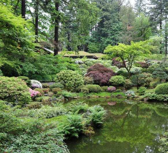 Photos videos archives portland japanese garden for Portland japanese garden admission