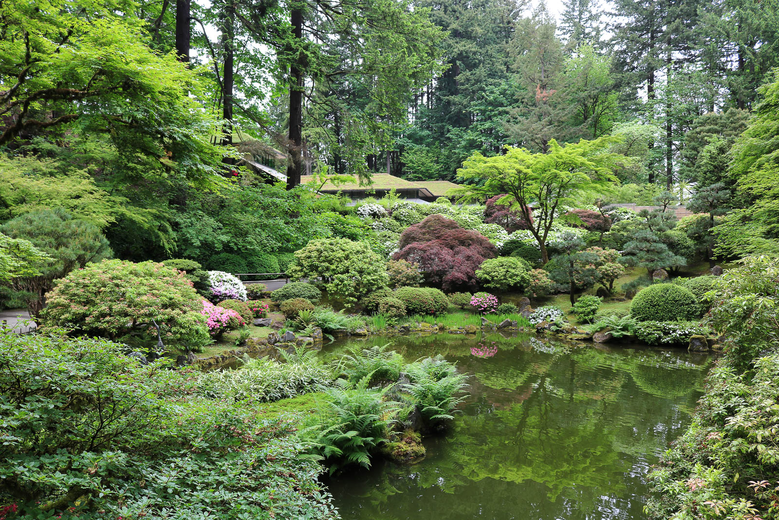 As spring turns to summer portland japanese garden - Portland japanese garden admission ...