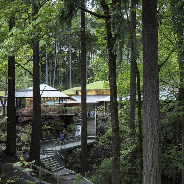 Join Or Renew Portland Japanese Garden