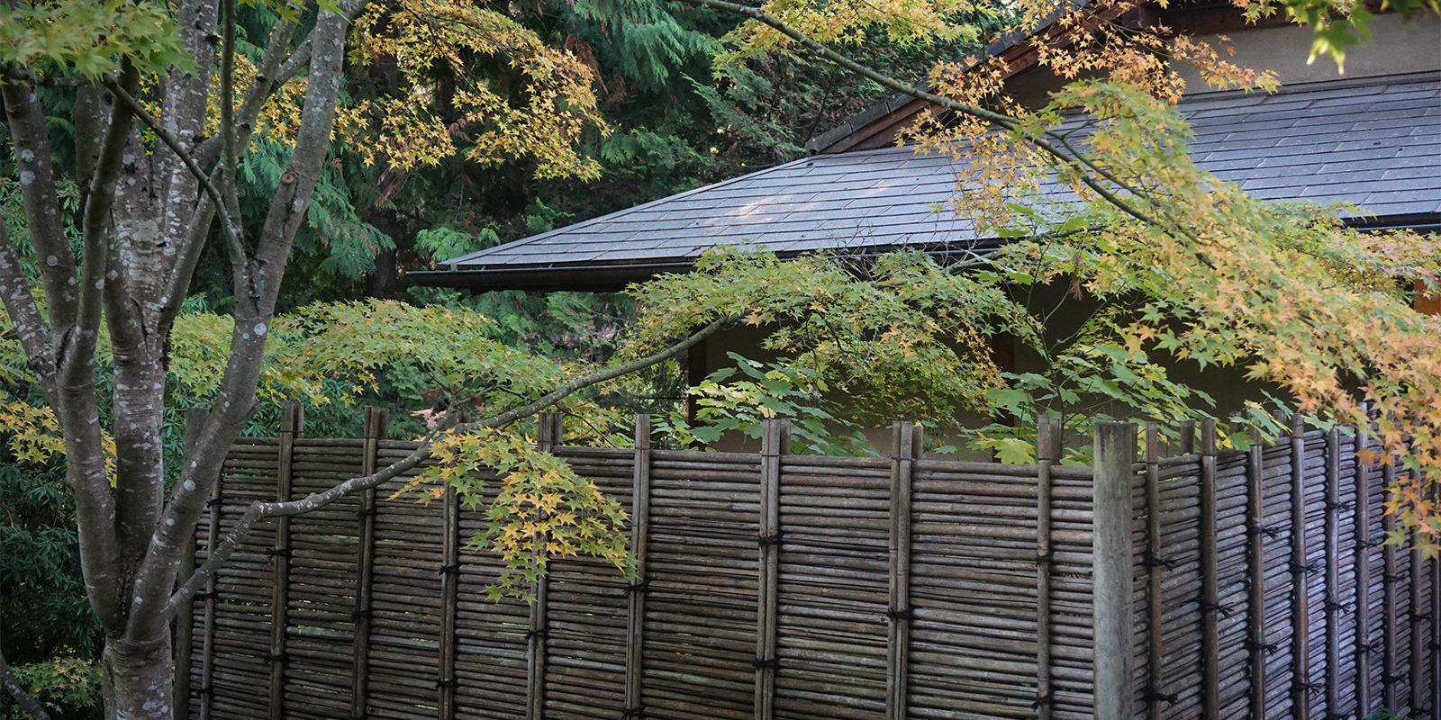 October Fall Photos of Portland Japanese Garden - 2018-10-22 - DSC01047_low