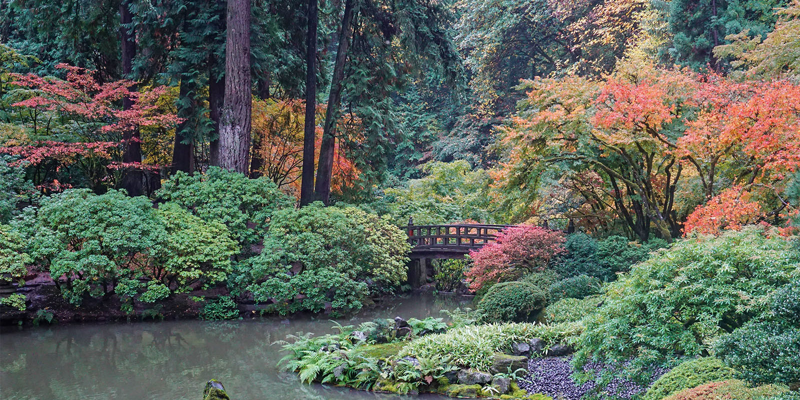 Peak Color Portland Japanese Garden. Photo by Tyler Quinn - 2018-10-29 - DSC01500_low