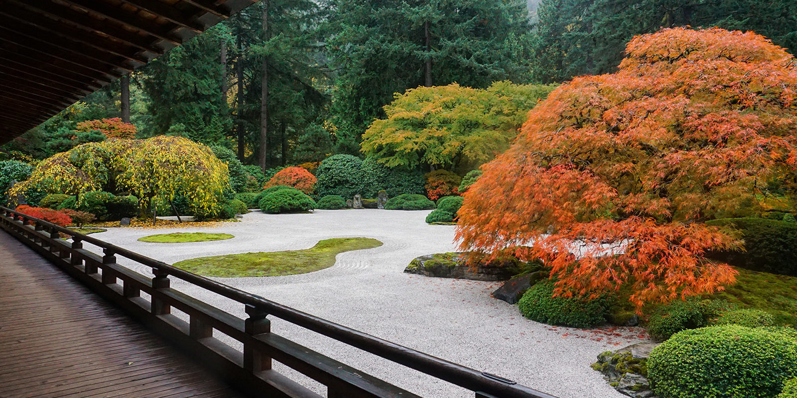 Peak Color Portland Japanese Garden. Photo by Tyler Quinn - 2018-10-29 - DSC01543_low