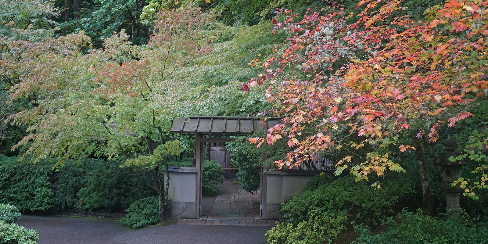 Portland Japanese Garden Early Fall Colors by Tyler Quinn - 2018-10-09 - DSC00907_low