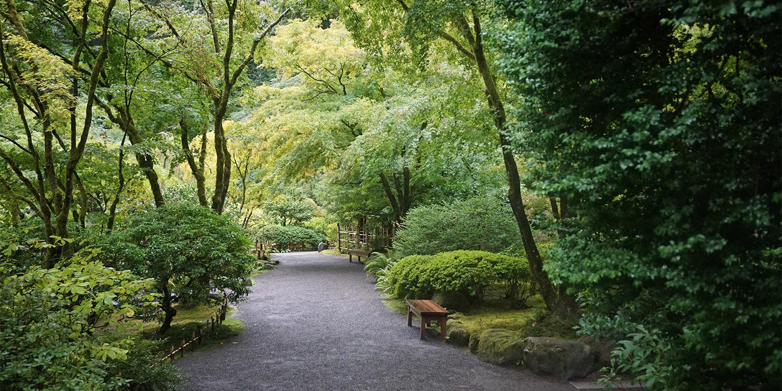 Portland Japanese Garden Early Fall Colors by Tyler Quinn - 2018-10-09 - DSC00915_low