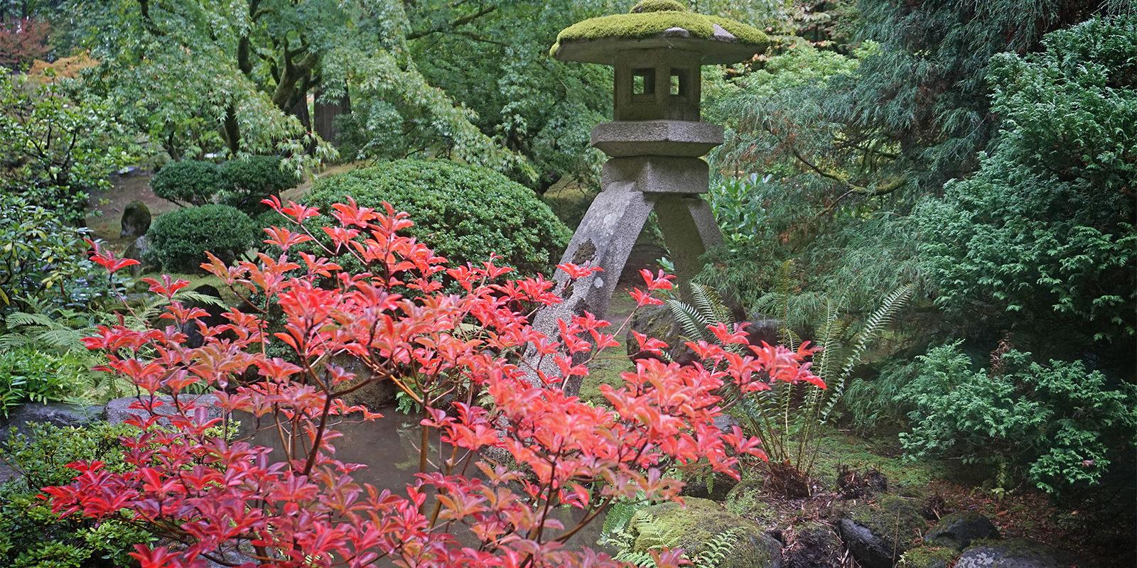 Portland Japanese Garden Early Fall Colors by Tyler Quinn - 2018-10-09 - DSC00920_low