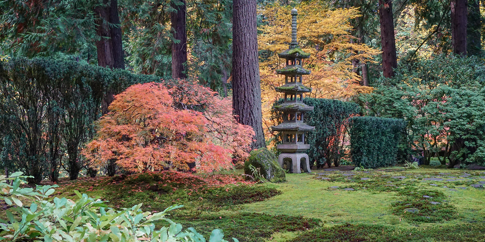 Early November Portland Japanese Garden Photos by Tyler Quinn - 2018-11-02 - DSC01585_low