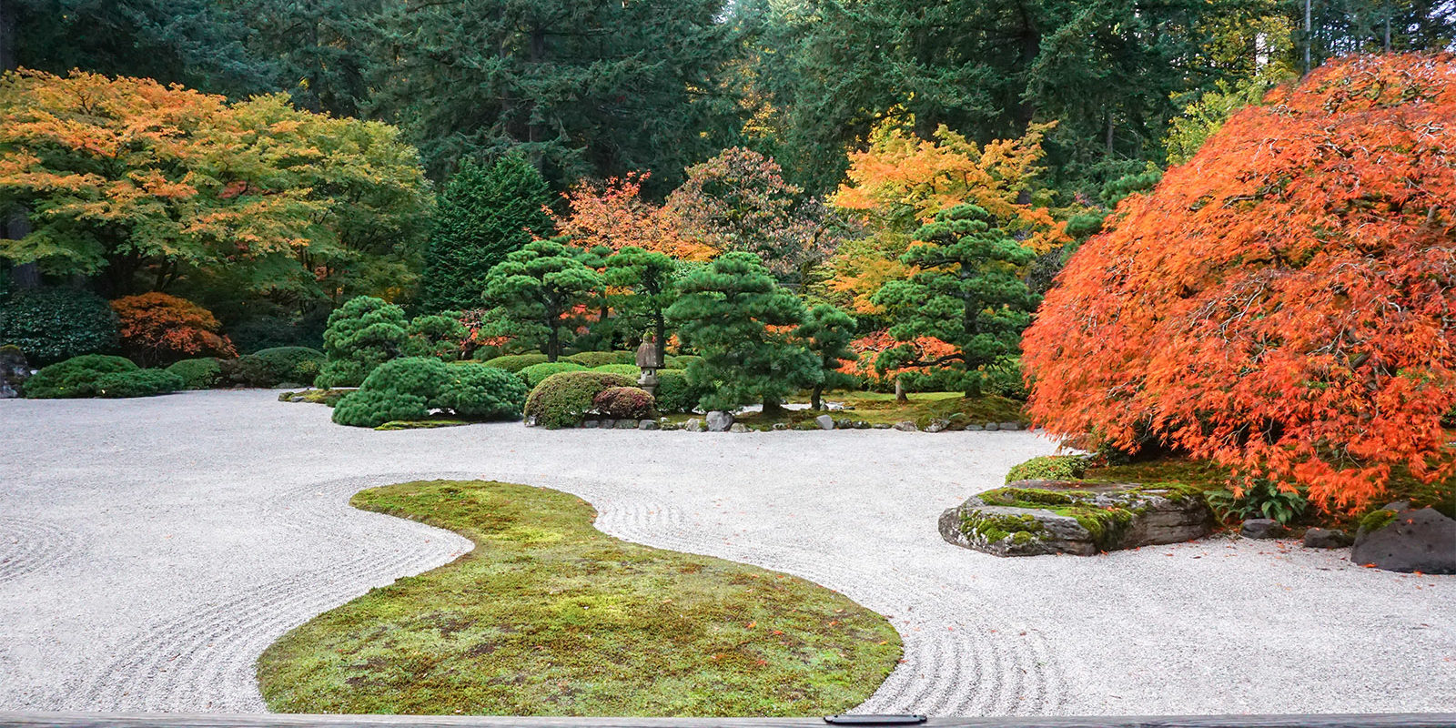 Early November Portland Japanese Garden Photos by Tyler Quinn - 2018-11-02 - DSC01590_low