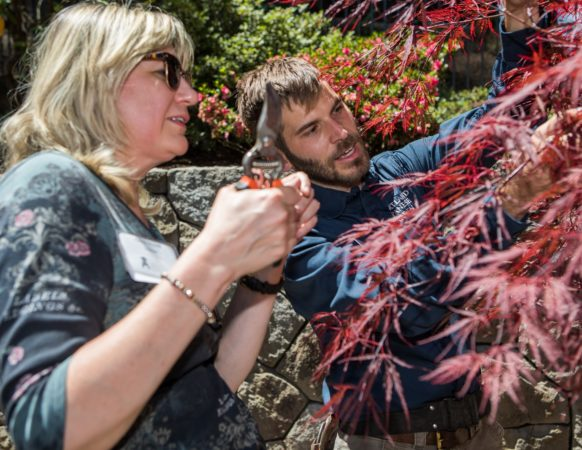Standing next to a Japanese maple tree, a gardener instructs a student holding pruning shears