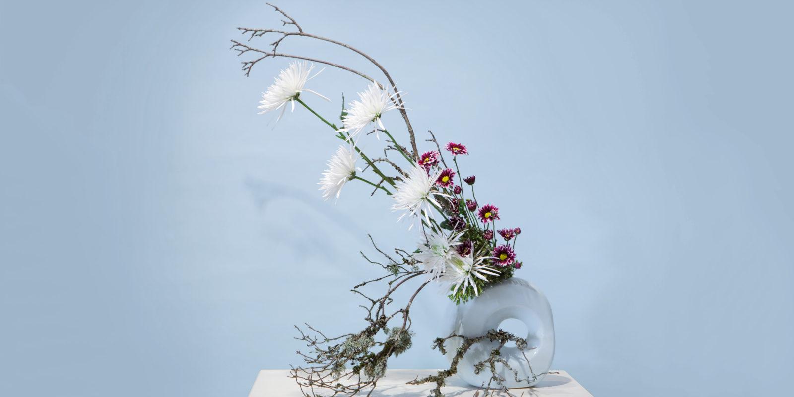 Ikebana - 2008-10-26 - RS574_chrysanthemum-69