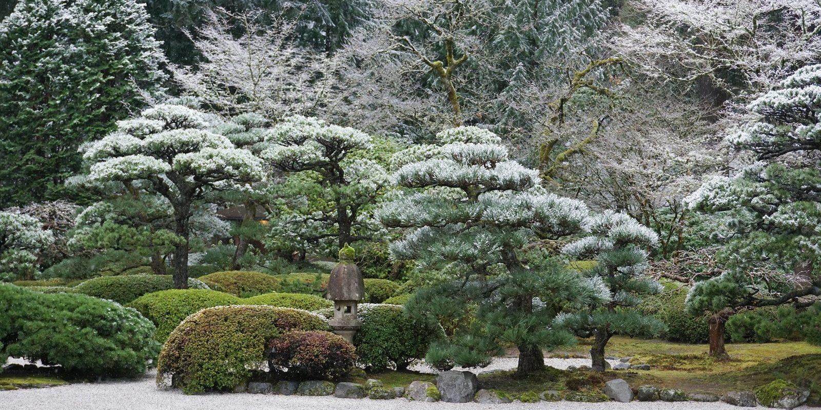 Garden with Snow in Winter. Photos by Tyler Quinn - 2019-02-04 - DSC02188