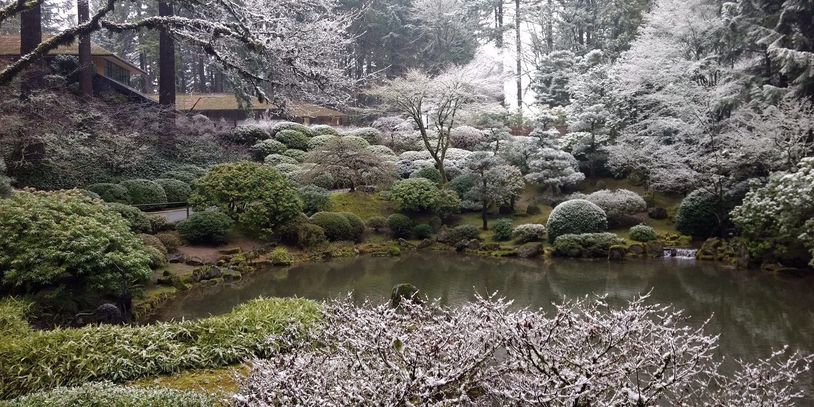 Garden with Snow in the Winter