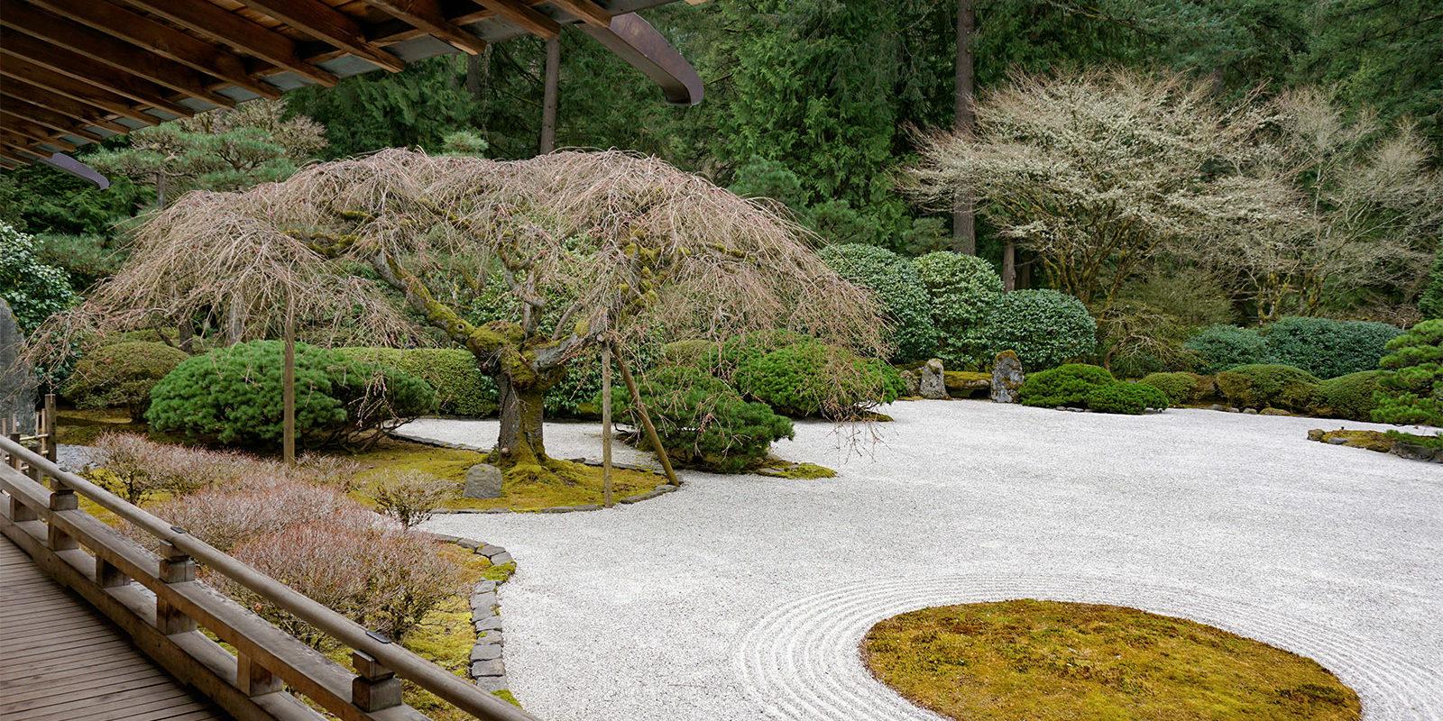 Portland Japanese Garden -Cherry Blossom Spring Watch - 3.21 - DSC02398
