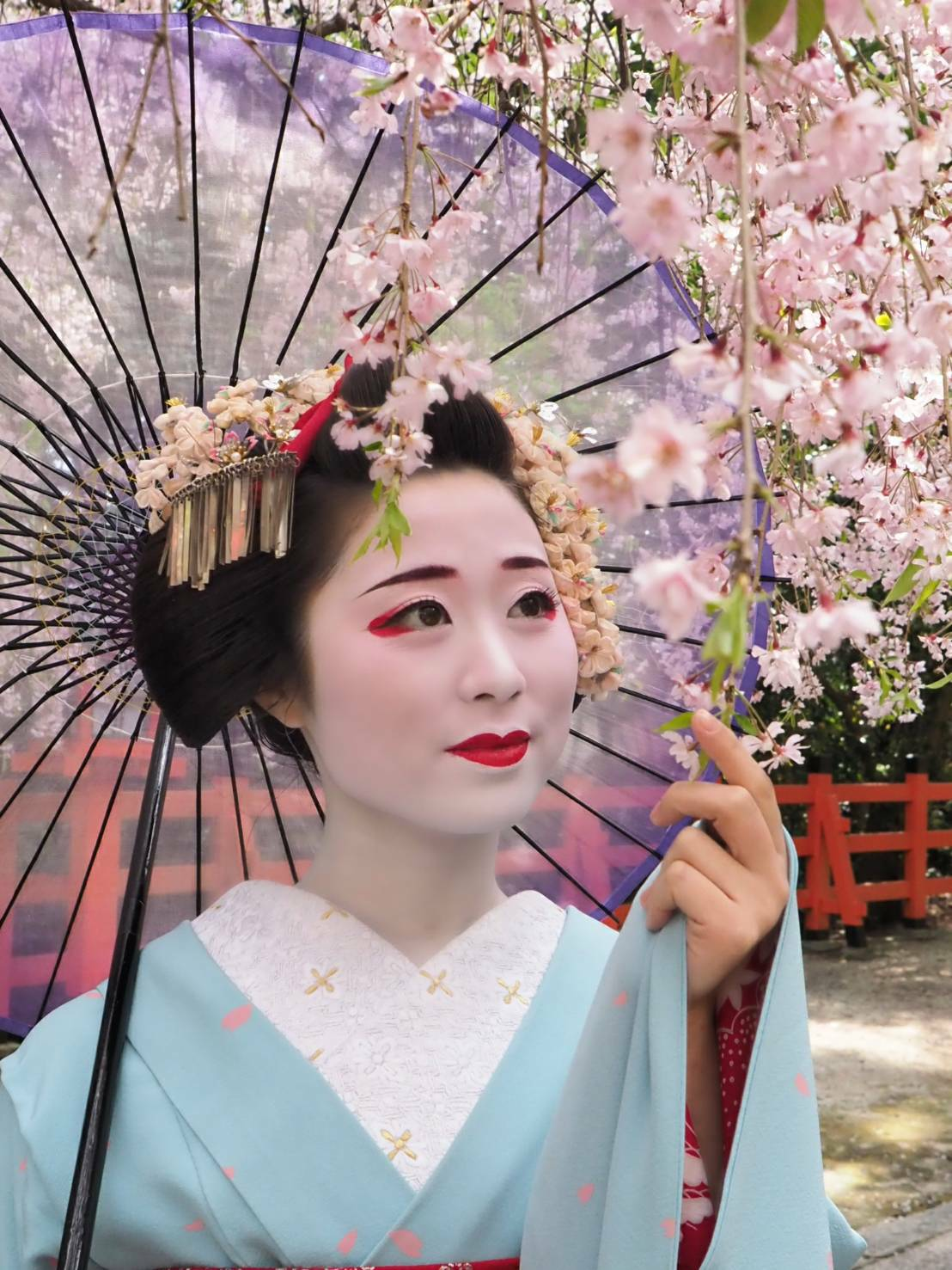 Geisha  Unraveling The Art And Mystery