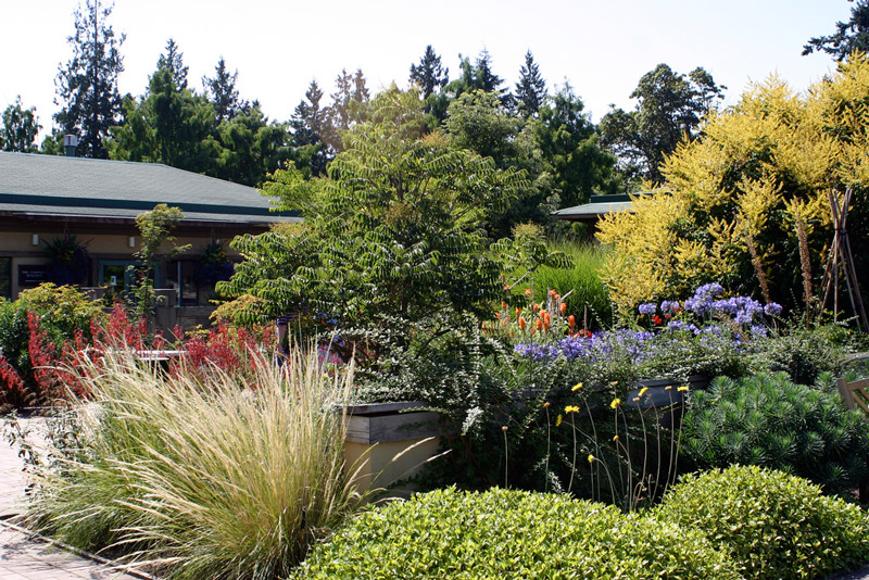 UBC_Botanical_garden_photo
