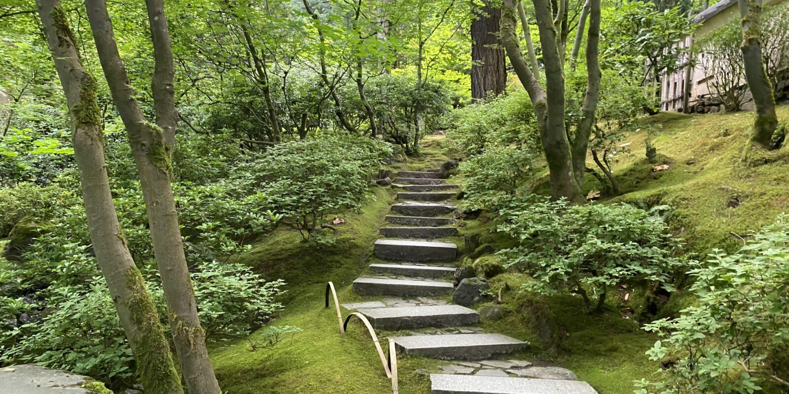 6.25_Natural Garden Steps Close Up_PM