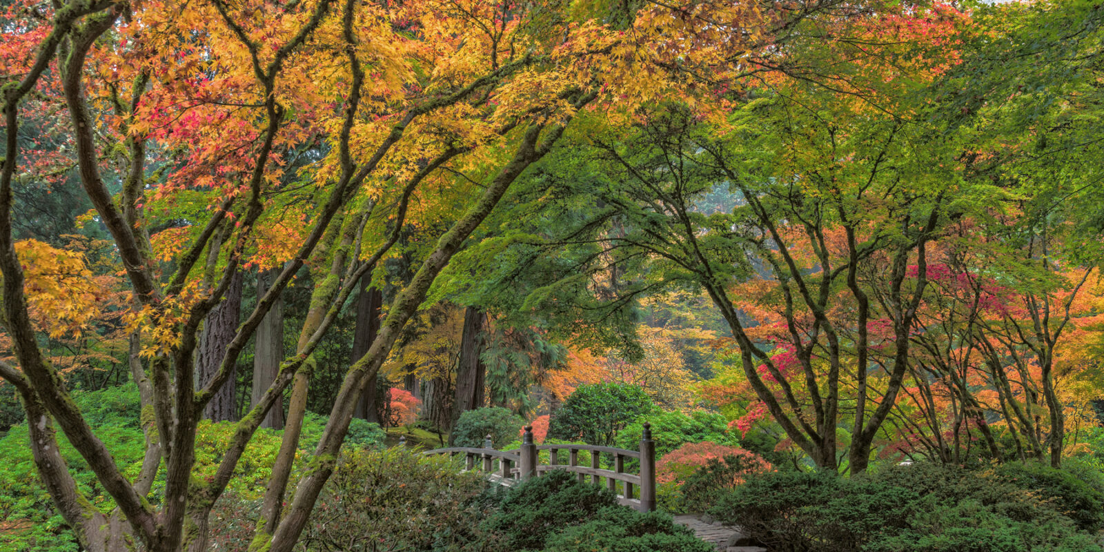 Portland Oregon Japanese Garden The Best Gardening Ideas