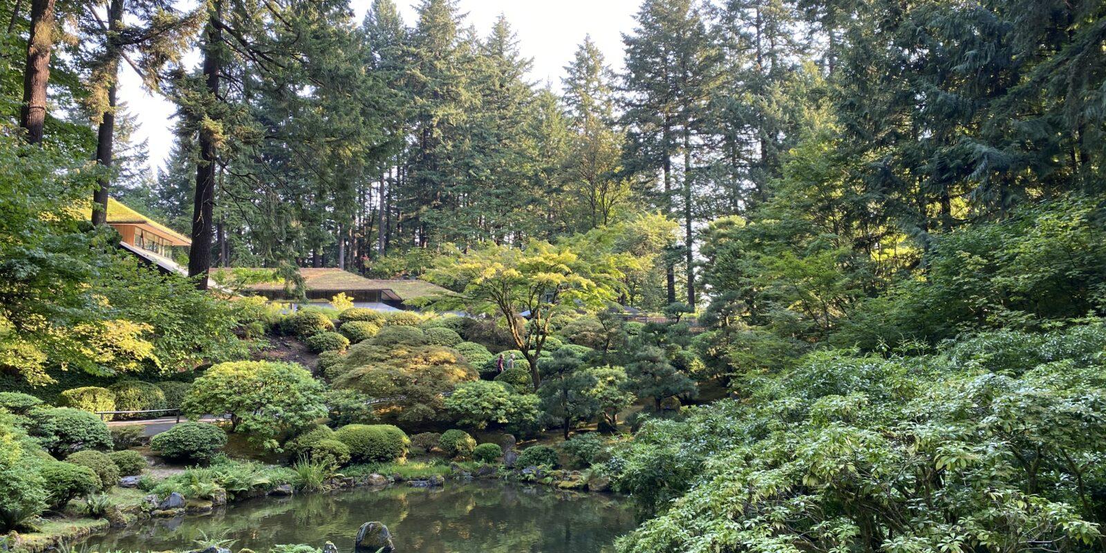 Strolling Pond