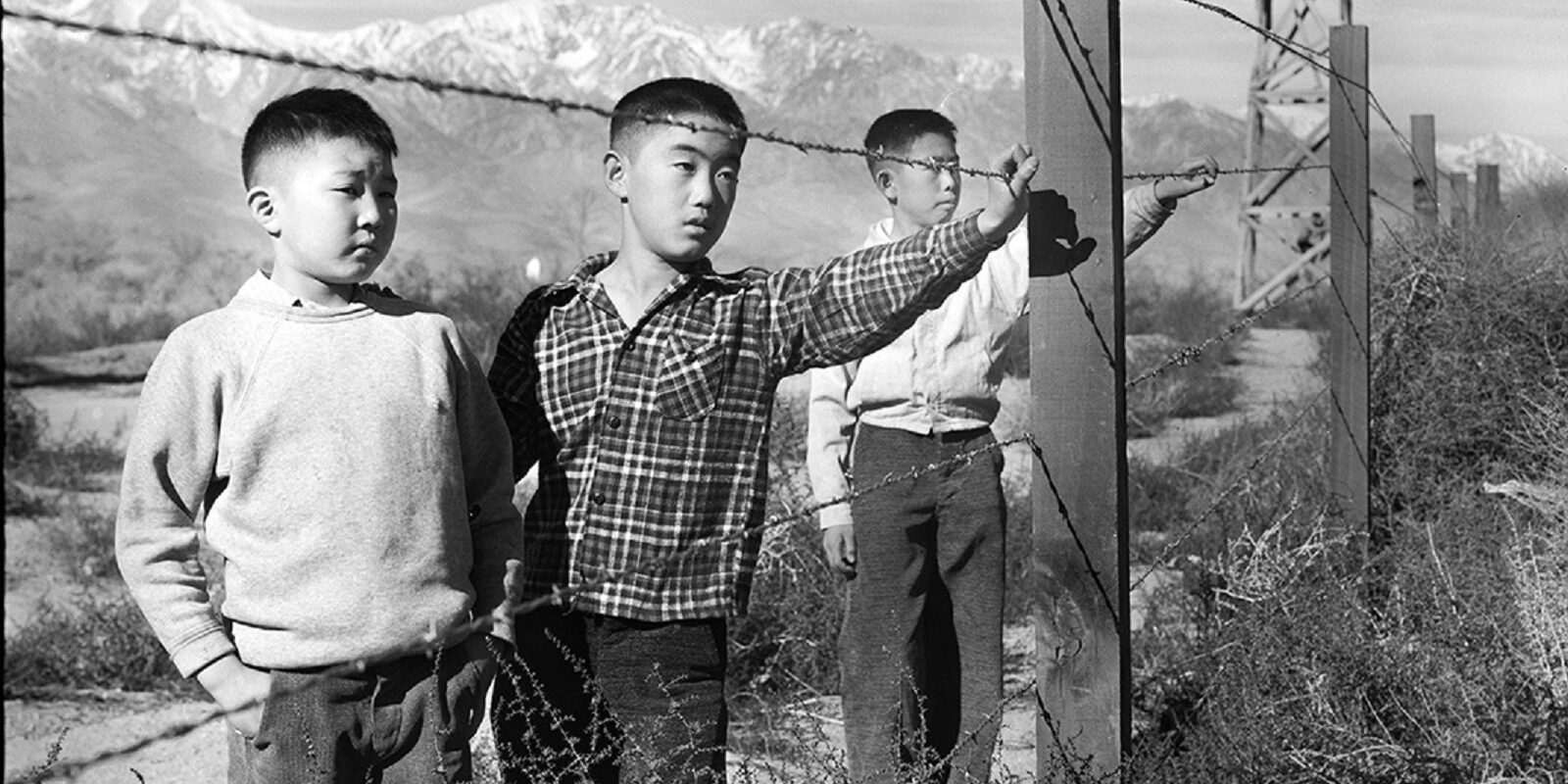 The Three Boys Behind Barbed Wire (Year unknown)