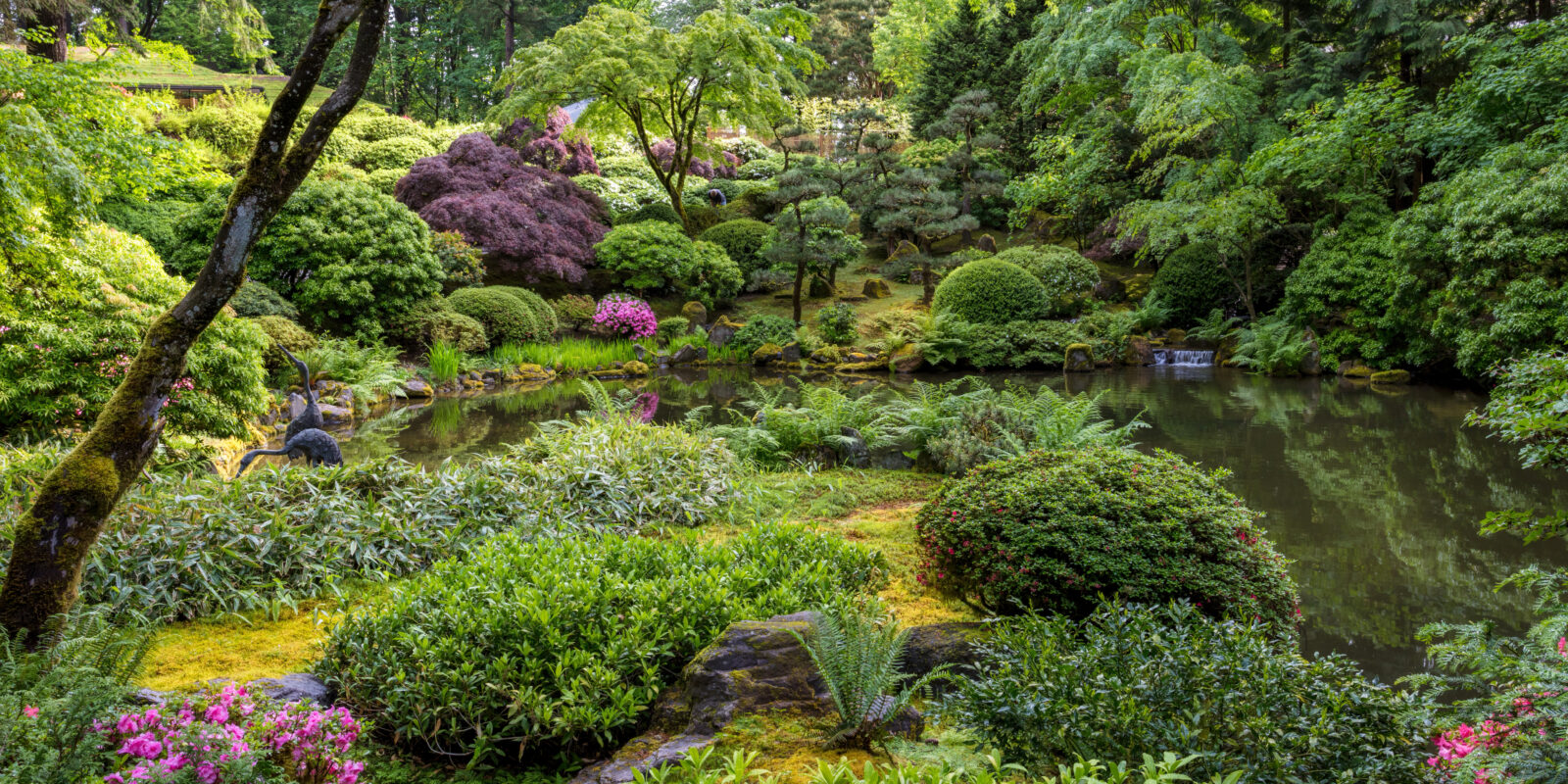 Late Spring Early Summer by Mike Centioli - 2017-05-31 - Portland Japanese Garden, May 2017-39